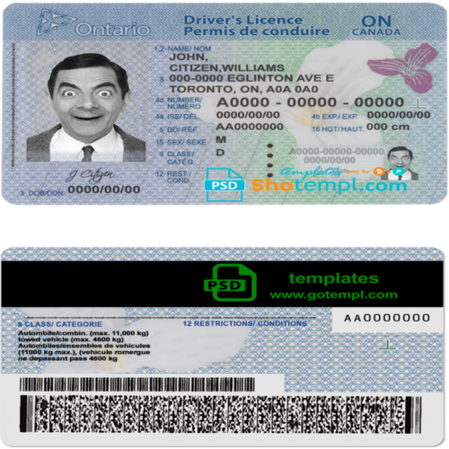 get driving license